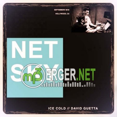Netsky & David Guetta - Ice Cold   (2018)